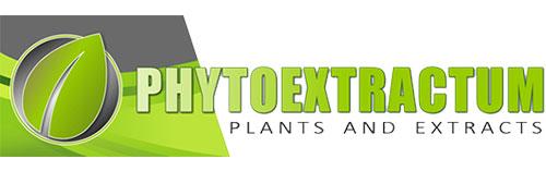 Best Kratom Vendors Phytoextractum